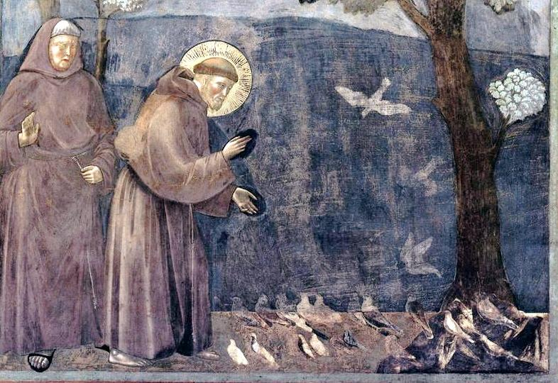 St. Francis of Assisi, Sermon to the Birds, upper Basilica of San Francesco d'Assisi